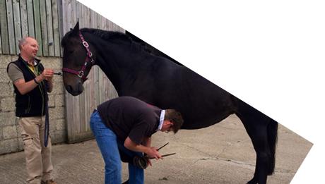 Register<br>your horse
